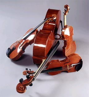 Polymers In The String Section